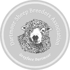 DBSA-logo-side-trans-grey
