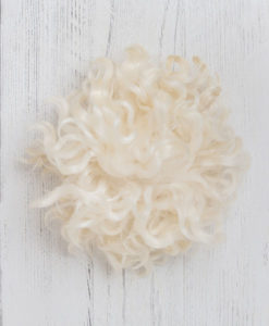 Lily Warne Pom Pom - Press On